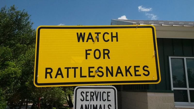 sign warning about rattlesnakes